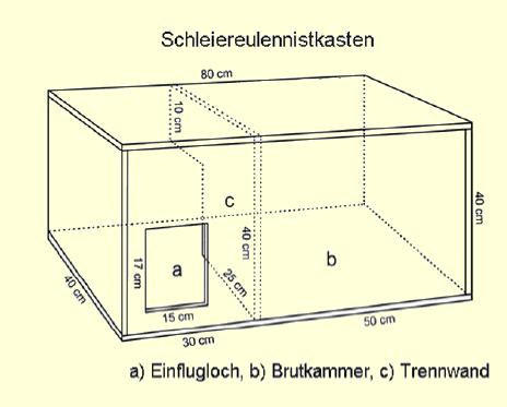 bauanleitung f r schleiereulen nistk sten biologische. Black Bedroom Furniture Sets. Home Design Ideas