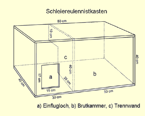 bauanleitung f r schleiereulen nistk sten biologische station haseniederung e v. Black Bedroom Furniture Sets. Home Design Ideas