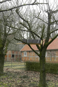 Steinkauz
