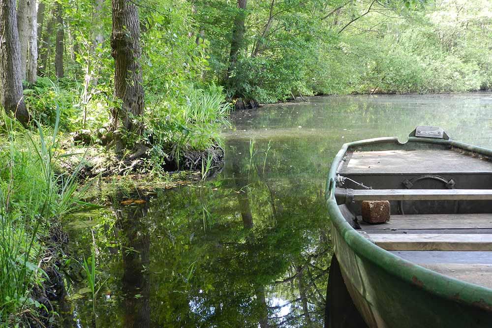 Boot im Wasser, am Ufer Wald