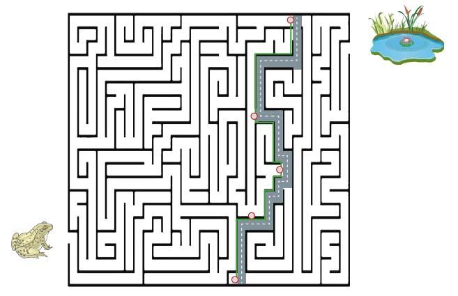 Labyrinth Krötenwanderug